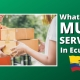 FAQ 61 - What About MULE SERVICES In Ecuador