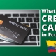 FAQ 67 - What About CREDIT CARDS In Ecuador